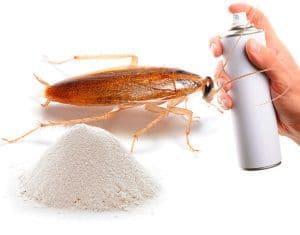 Самые эффективные способы избавиться от черных и рыжих тараканов