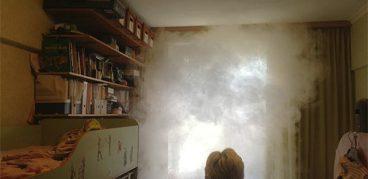 Дымовые шашки в борьбе с тараканами