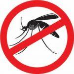 Народні способи позбавлення від комарів в квартирі або будинку